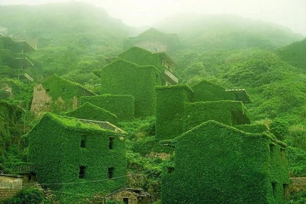 30 фотографий, на которых природа победила в битве с цивилизацией